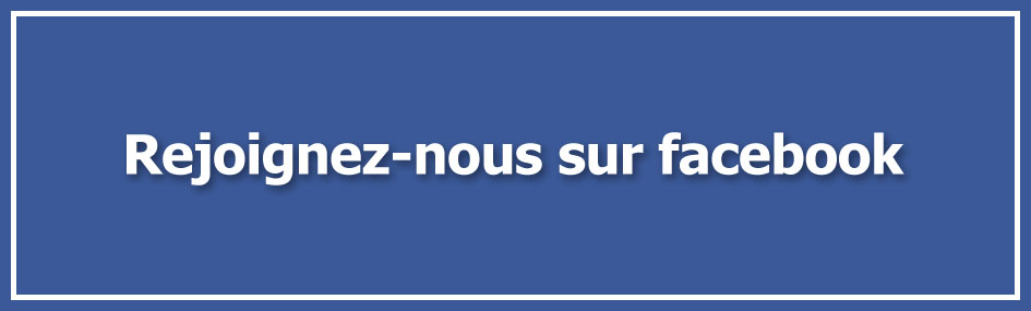 facebook blog mepris.fr